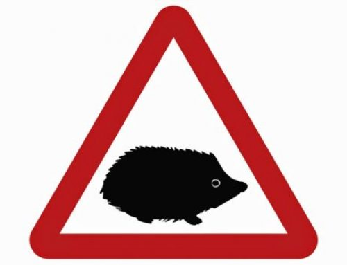 New Hedgehog Road Sign